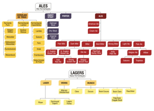 img-estacao-beerstypestree-1